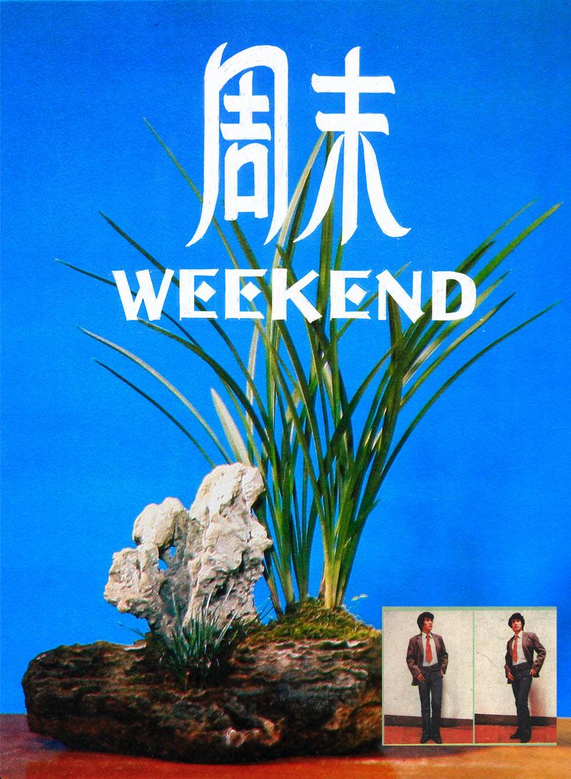 Lei-Lei—Potted-Landscape-Art-Exhibition—Bonsai-Art-Exhibition-Office-
